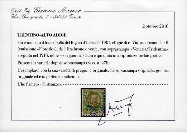 1918 Trentino 1 Lira varietà - Avanzo